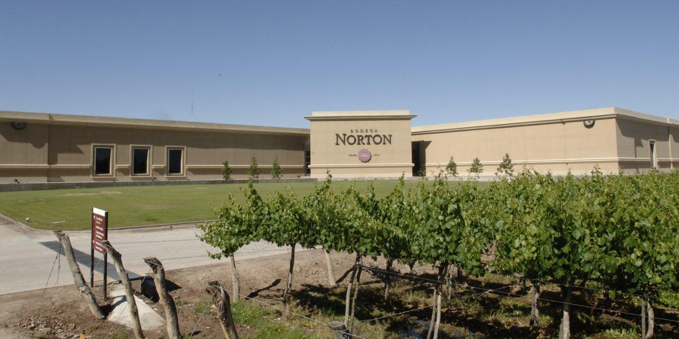 norton3